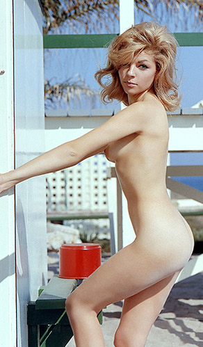 Sharon Cintron, Miss May 1963, Playboy Playmate